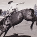 Photograph - Dally Holden competing at the Ipswich Rodeo. ; 1955; 16230