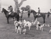 Photograph - Melbourne Hunt Club at Briagolong. ; 1985; 17865