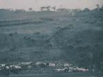 Photograph - 3rd Light Horse Brigade, Victoria. ; Maguire,  Brian; 2009 - 2010; 13903