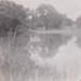 Photograph - Garden Hole (?). ; Kitchen, HD; 1949 - 1950; 17492