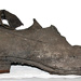 Boot; Circa 1910-1920; CG4.b