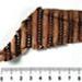 Fabric fragment; CG12.b