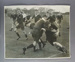 Rugby union photograph, RAAF & RNZAF rugby union teams, 1943; Unknown; 1943; M8205