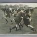 Rugby union photograph, RAAF & RNZAF rugby union teams, 1943; Unknown; 1943; M8205