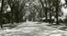 Photograph; 7 July 1940; M92.29.11