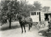 Photograph, Rabe's Dairy horse-drawn delivery vehicle; circa 1914; M2011.12.31