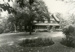 Photograph, House at 165 Olive; M85.50.2