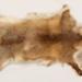 Wild Fox Fur; 88.75