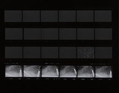 Untitled [Glitter]; Sample, Tricia; 1975; 1986:0008:0006