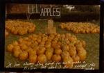 Untitled [Apples]; Culver, Joyce; 1976; 2011:0018:0006