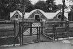 Untitled [Zoo]; Dane, Bill; ca. 1975; 2011:0014:0003