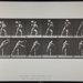 Heaving a 75-lb. rock. [M. 311]; Da Capo Press; Muybridge, Eadweard; 1887; 1972:0288:0079