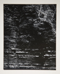 [Untitled, Abstraction of natural forms]; Wells, Alice; ca. 1962; 1972:0287:0163