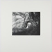 Untitled [Tree on side of hill]; DeGabriel, Dale; 1972; 1974:0003:0001