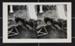 Dylan; Fichter, Robert; 1968; 2000:0061:0015