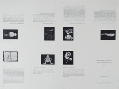 ADSVMVS ABSVMVS; Frampton, Hollis; 1982; 1986:0018:0002