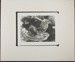 Untitled [Birds standing in feeder.]; Enos, Franklin; March 31, 1972; 1972:0072:0001
