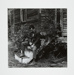 [Man sitting on wooden front steps of a wooden house]; Fichter, Robert; ca. 1967; 1983:0060:0001