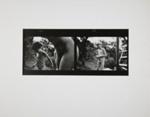 Untitled; Cox, Gary; ca. 1970; 1971:0140:0001