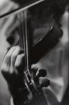 Untitled [Violin] ; Shustak, Larence N.; ca. 1960s; 1971:0174:0001
