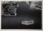 [Untitled, abstraction of natural forms]; Wells, Alice; ca. 1963; 1973:0132:9999