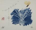 Nature's own Eye Looks Back; Fichter, Robert; 1969; 1982:1618:0007