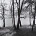 Picnic Pavilion at Mendon Ponds; Bretz, Robert L.; 2000:0076:0005