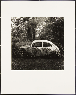 Untitled [Car in bushes]; Cooper, John; ca. 1983; 1983:0016:0022