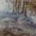 Untitled [Reflection on water]; Klett, Mark; 1975; 2011:0011:0008