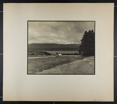 [man and oxen plowing field with lake in background]; Hahn, Alta Ruth; ca.1930; 1982:0020:0017