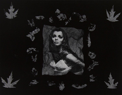 Untitled [Photograph and leaves]; Riss, Murray; ca. 1970s; 1972:0194:0026