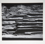[Untitled, Image of a layer of bark] ; Wells, Alice; ca. 1965 ; 1972:0287:0177