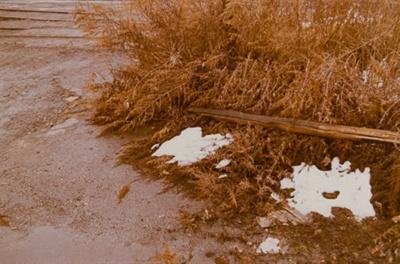 Untitled [Snow, grass, and gravel]; Klett, Mark; 1975; 2011:0011:0012