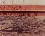 [untitled]; Collinc, Kathleen; 1974; 1974:0069:0007