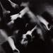 Untitled [Female nude]; Maldre, Mati; ca. 1971; 1972:0277:0001