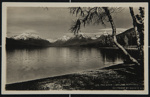 THE BIRCH TREE LAKE MCDONALD; Marble, R.E.; c.a. 1910; 1975:0041:0113