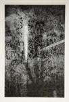 [Untitled, superimposed image] ; Wells, Alice; ca. 1965; 1972:0287:0156