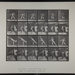 Heaving a 20-lb. rock. [M. 315]; Da Capo Press; Muybridge, Eadweard; 1887; 1972:0288:0083