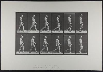 Walking. [M. 6]; Da Copa Press; Muybridge, Eadweard; 1887; 1972:0288:0005