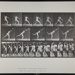 Heaving a 20-lb. rock. [M. 316]; Da Capo Press; Muybridge, Eadweard; 1887; 1972:0288:0084