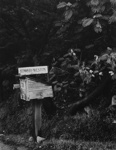 Edward's Mail Box; Colwell, Larry; ca. 1950s; 2000:0081:0004