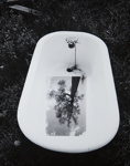 Untitled [Bathtub]; Pond, David; undated; 2000:0116:0003