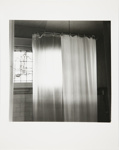 Untitled [Shower curtain]; Kaida Knapp, Tamarra; ca. 1977; 2011:0025:0001
