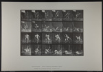 Wrestling; Graeco-Roman. [M. 348]; Da Capo Press; Muybridge, Eadweard; 1887; 1972:0288:0094