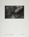 [Page Twelve of 1981 Calendar - December]; Coppola, Richard; 1981; 2000:0141:0012