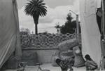 Untitled [Chichicastenango]; Dane, Bill; ca. 1974; 2011:0014:0006