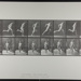 Running. [M. 67]; Da Capo Press; Muybridge, Eadweard; 1887; 1972:0288:0019