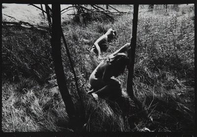 Untitled [from Plastic Love Dream]; Mertin, Roger; ca. 1969; 1976:0031:0004