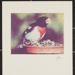 Male rose breasted grosbeak; Enos, Franklin; ca. early 1970s; 1976:0001:0001