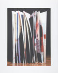 Untitled [Open book]; Manchee, Doug; 2008; 2009:0060:0031